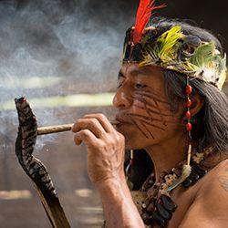 Western Amazon